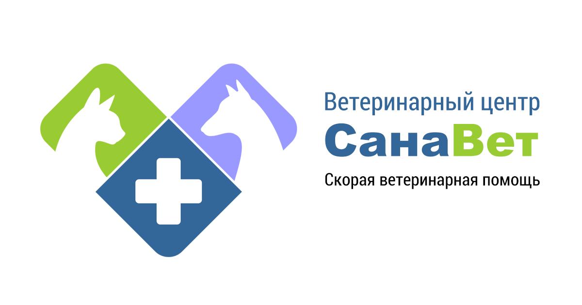 Стерилизация кошек - техника и виды, подготовка и последствия, реабилитация и цены в клиниках