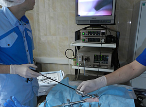 Лапароскопическая стерилизация. Общий вид эндоскопического кабинета при проведении лапароскопической стерилизации кошки